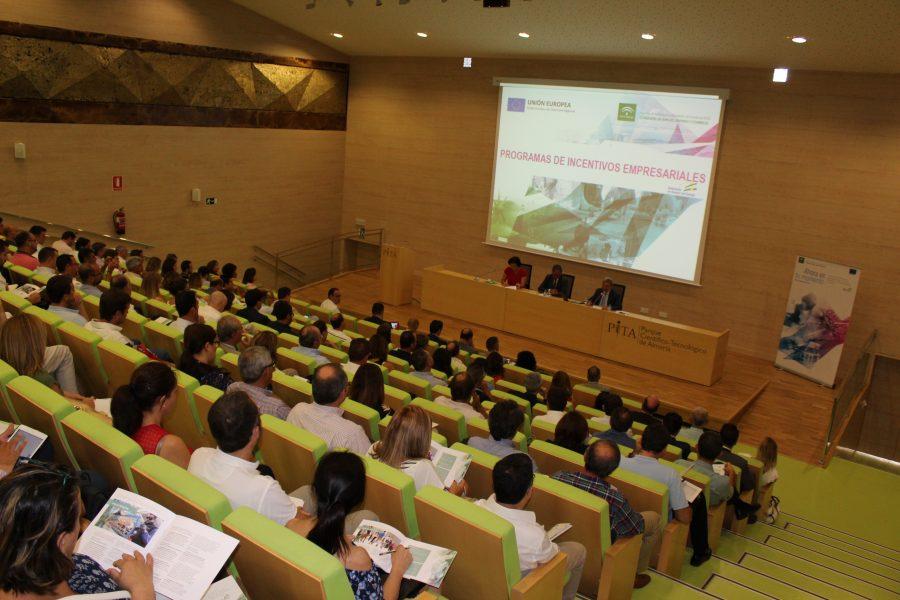 Presentación ayudas agencia IDEA